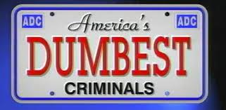 10 Dumb criminals