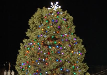 Annual tree lighting ceremony brings smiles to many faces