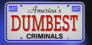 10 Dumb criminals