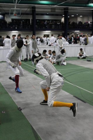 Fencing makes a comeback!
